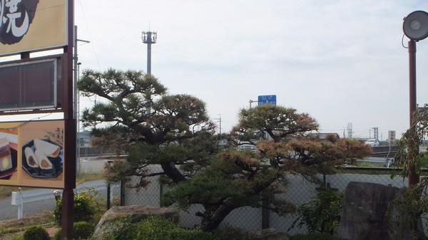 2011otukimi001.jpg